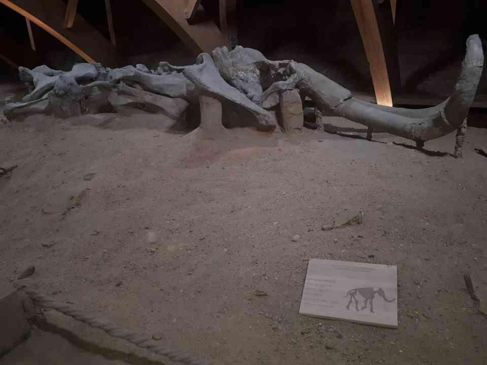 Корисници ГЦ Јагодина у посети древној римској насеобини Виминацијуму 3