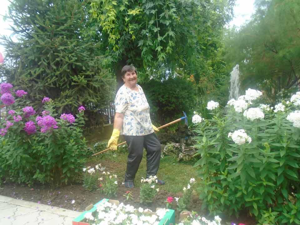 Уређење дворишта и парка ГЦ Јагодина - слика 2